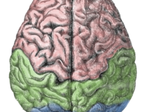 Practices to Keep the Brain Sharp